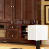 Đèn bàn nội thất NDB005